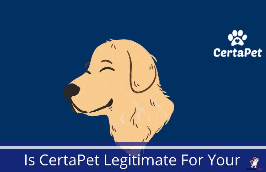 is-certapet-legitimate-for-your-pets