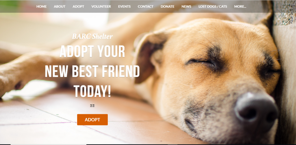 Brooklyn Animal Resource Coalition