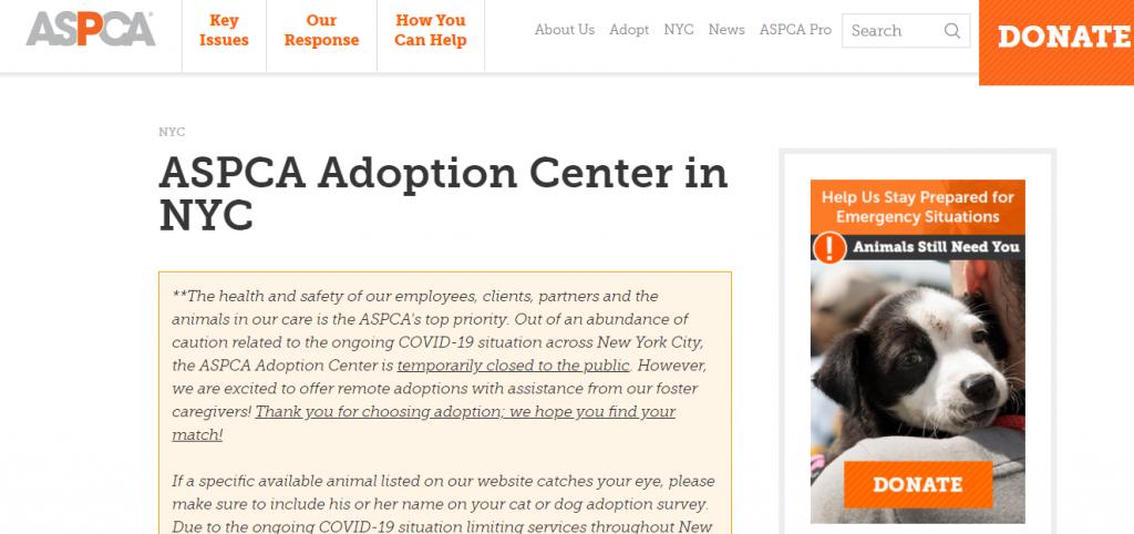 ASPCA Adoption Center