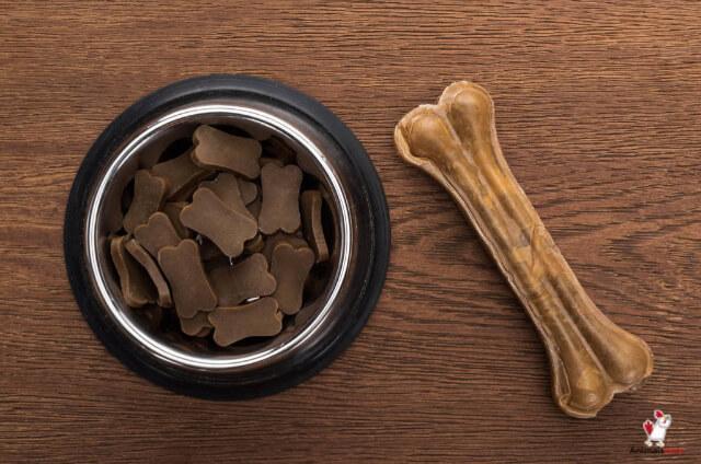Dogs Digest Bones